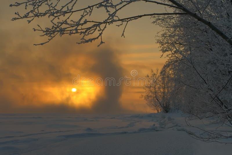 dimmig frostig morgon royaltyfri fotografi