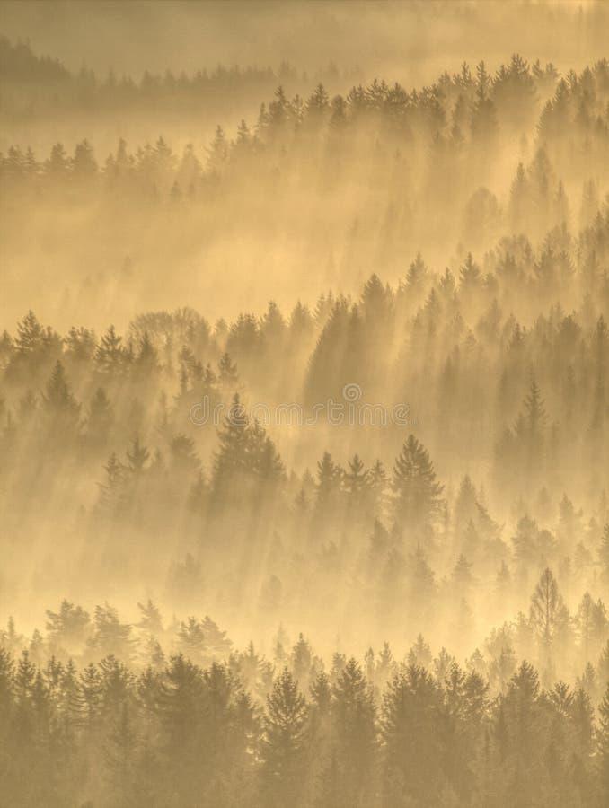 Dimmig höstlig morgon i berglandskap arkivfoto