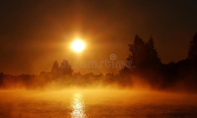 Dimmig höstmorgon Litauen landskap royaltyfria foton