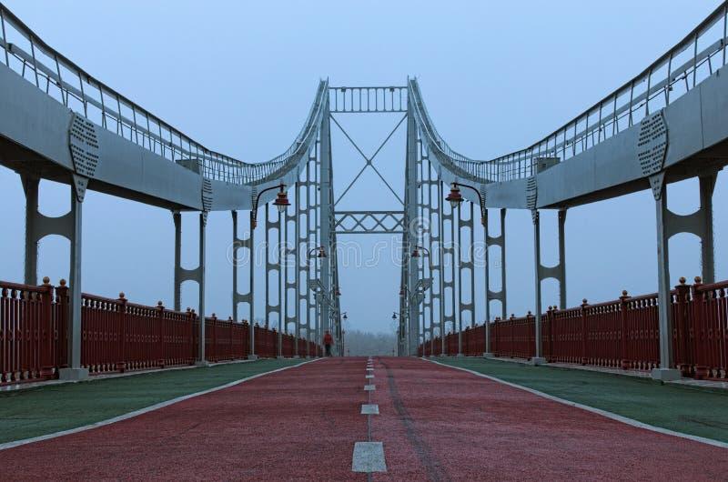 Dimmig landskapsikt av den fot- bron över den Dnipro floden till den Trukhaniv ön arkivfoton