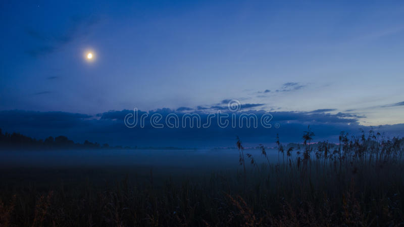 Dimmig månbelyst natt fotografering för bildbyråer