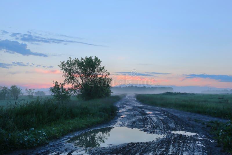 Dimmig morgon efter regn i centrala Ryssland arkivfoton