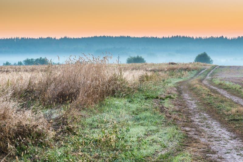 Download Dimmig Morgon För Belarus Fält Arkivfoto - Bild av fält, natur: 76700956