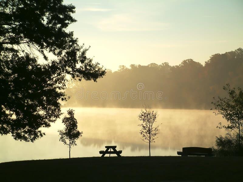 dimmig morgon för höst arkivbilder