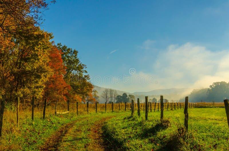 Dimmig morgon längs Cades liten vikgränd arkivfoto