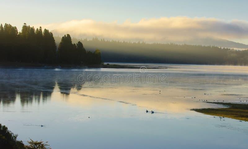 Dimmig morgon på laken Almanor royaltyfri bild