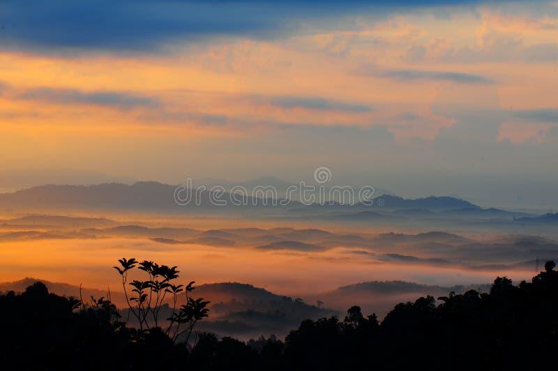 Dimmig morgon på panoramakullen. royaltyfri bild