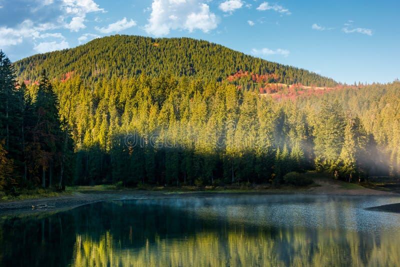 Dimmig morgon på skogsjön i berg royaltyfri fotografi