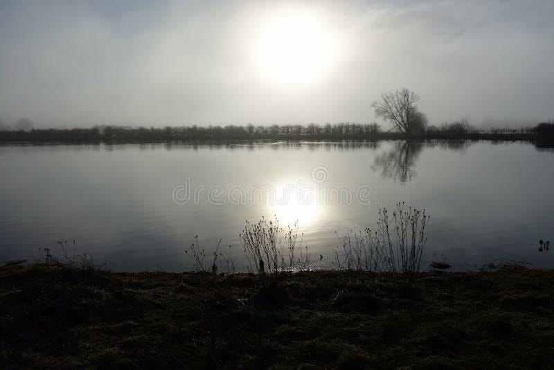 Dimmig morgon vid en sjö royaltyfri bild