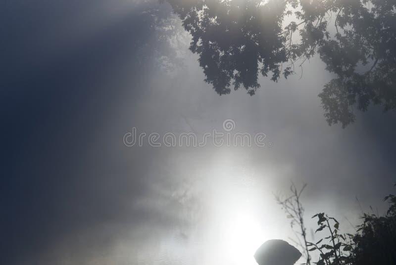 dimmig morgonström arkivbilder