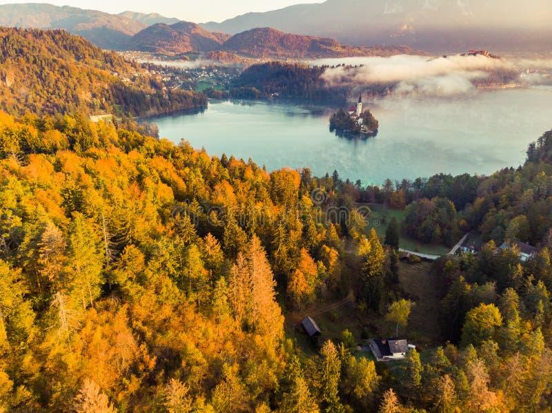 Dimmig och dimmig soluppgång i den blödde sjön på nedgången, Slovenien royaltyfria bilder