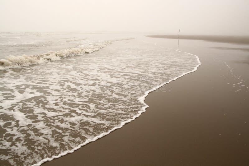 dimmig seashorewave arkivbilder
