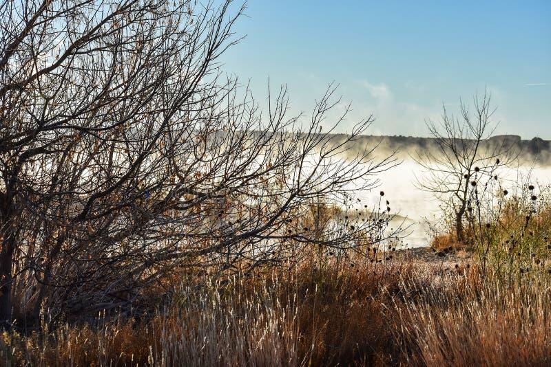 Dimmig soluppgång på sjön royaltyfri bild