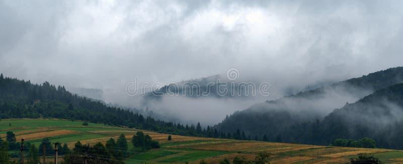 Dimmiga carpathian berg bak veteåkerottan royaltyfria foton