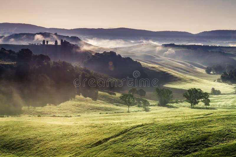 Dimmiga kullar och ängar i Tuscany på soluppgång royaltyfria bilder