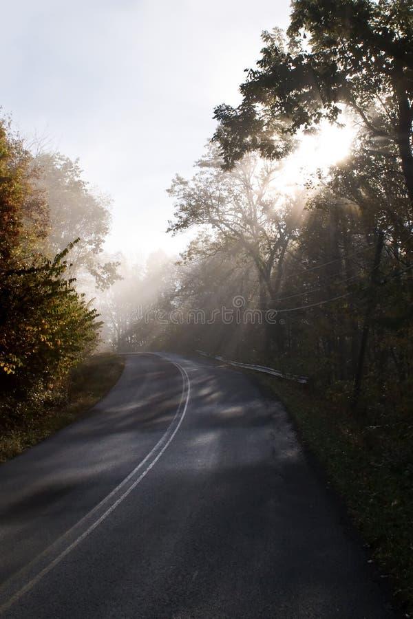 Dimmiga solstrålar på en landsväg arkivfoto