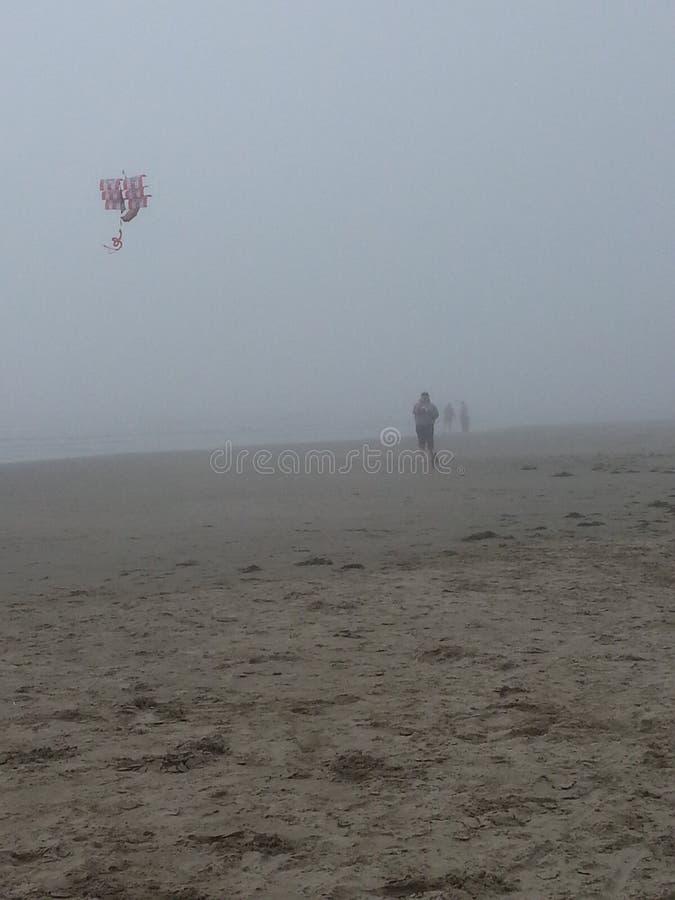 Dimmigt drakeflyg fotografering för bildbyråer