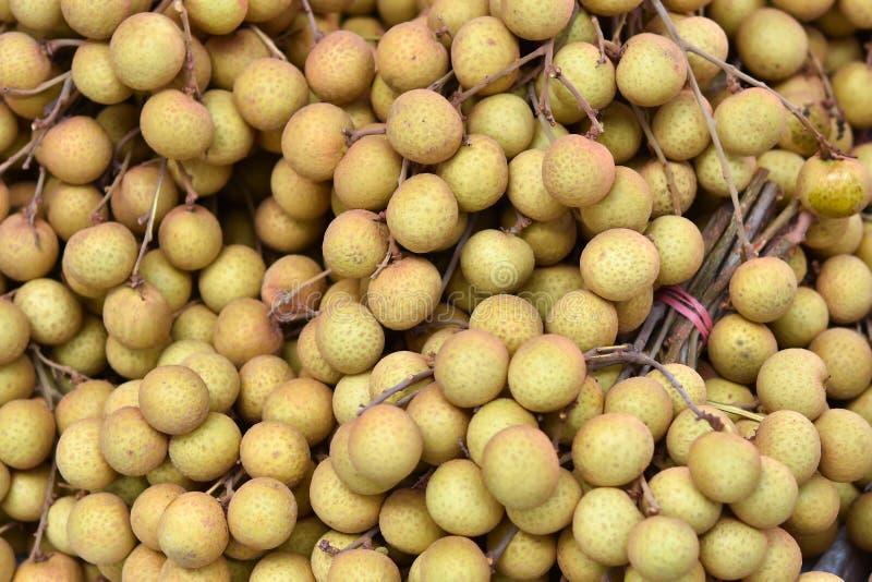 Dimocarpus longan fresco immagini stock libere da diritti