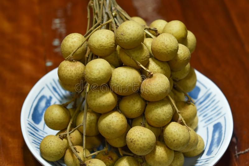 Dimocarpus longan fresco immagine stock libera da diritti