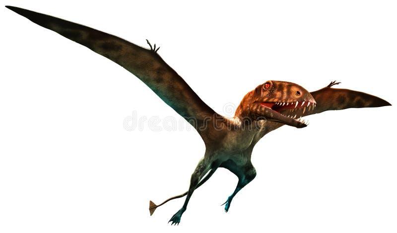 Dimorphodon ilustração do vetor
