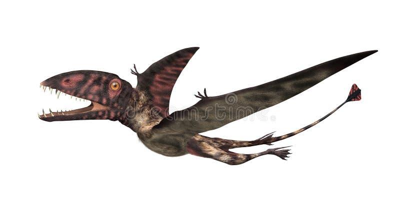 Dimorphodon Prehistoric Flying Reptile. The Dimorphodon was an extinct flying reptile that lived during the Jurassic period - 3D render royalty free illustration