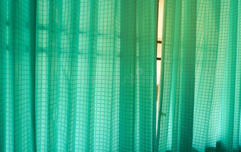 din illustration för gardindesigngreen royaltyfri foto