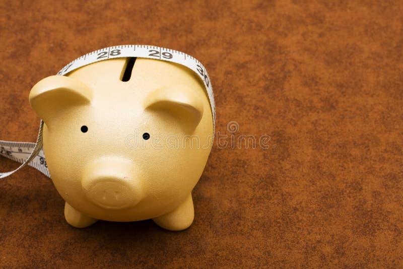 dina mätande besparingar fotografering för bildbyråer