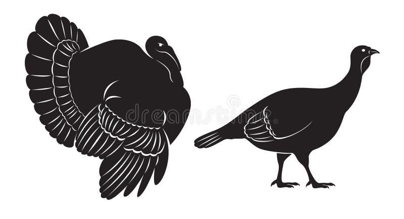 Dinde d'oiseau illustration libre de droits