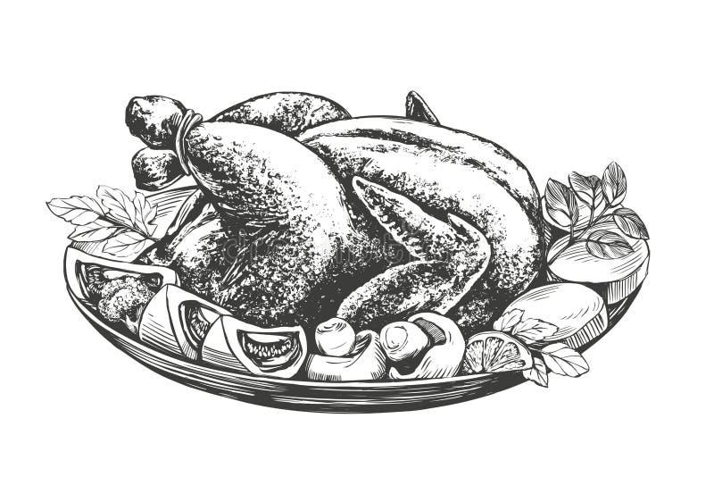 Dinde rôtie, poulet, avec le vecteur tiré par la main d'ingrédients illustration libre de droits