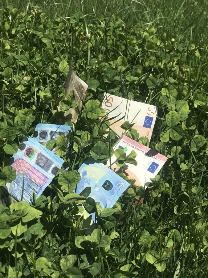 Dinero creciente en el jardín imágenes de archivo libres de regalías