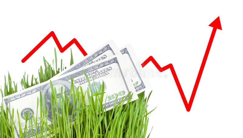 Dinero creciente en hierba imagen de archivo libre de regalías