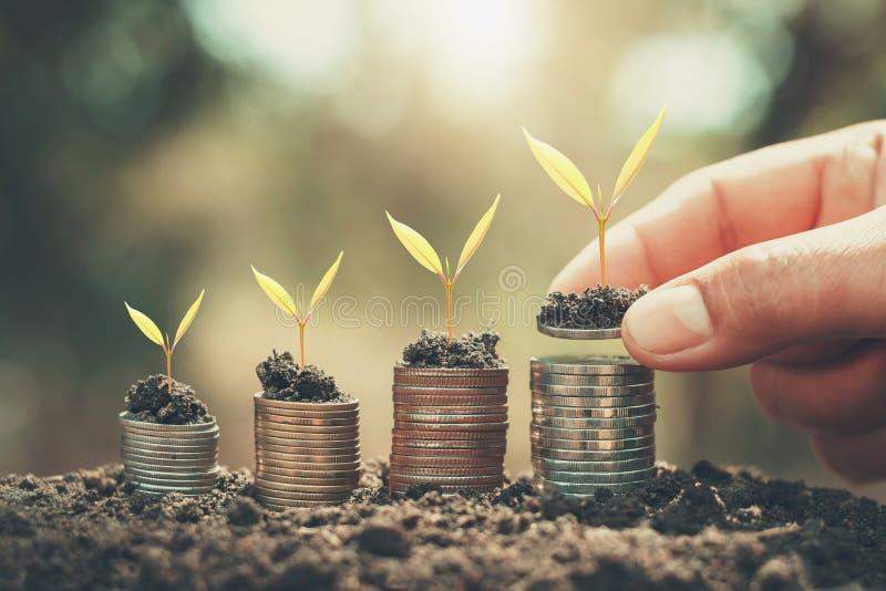 dinero de ahorro de la mano y plántula creciente en monedas contabilidad de las finanzas imágenes de archivo libres de regalías