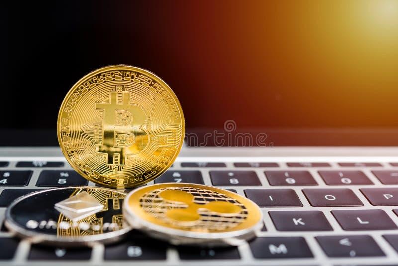 Dinero de oro virtual de las finanzas de la moneda de la moneda de Bitcoin imagen de archivo libre de regalías