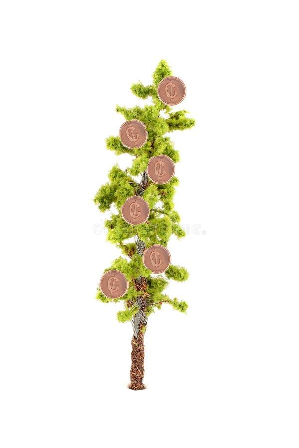 Dinero que crece en árbol fotografía de archivo