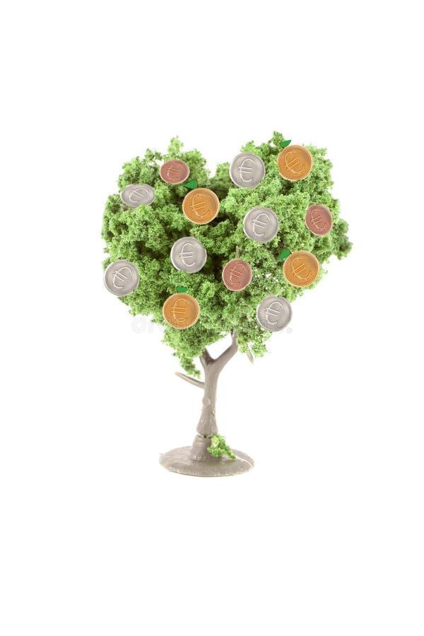 Dinero que crece en árbol fotografía de archivo libre de regalías
