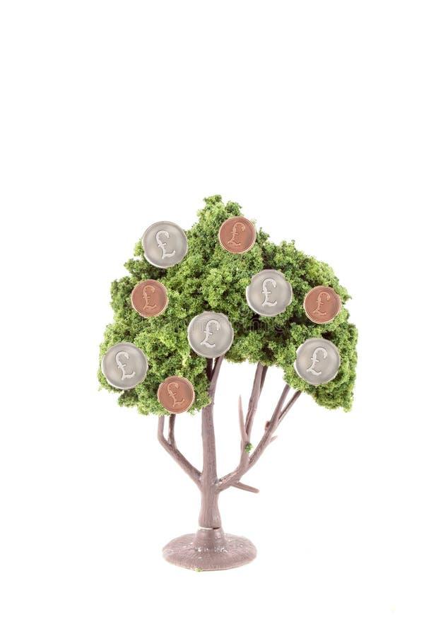 Dinero que crece en árbol foto de archivo