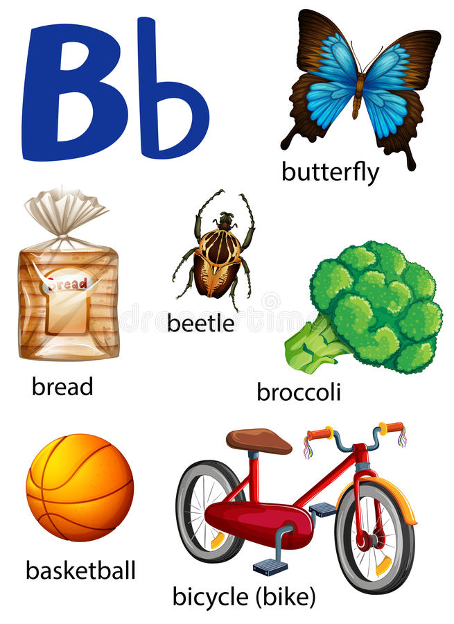 Dingen die met de brief B beginnen vector illustratie