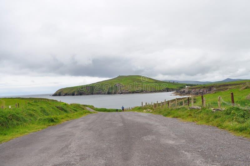Dingle, Irland stockfotografie