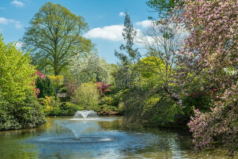 Dingle Shrewsbury: Πηγές και λίμνη στοκ εικόνες