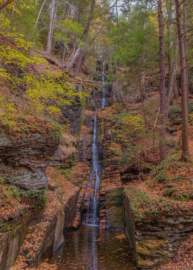 Dingmans понижается водопад в горах Poconos, Пенсильвания США стоковое изображение rf