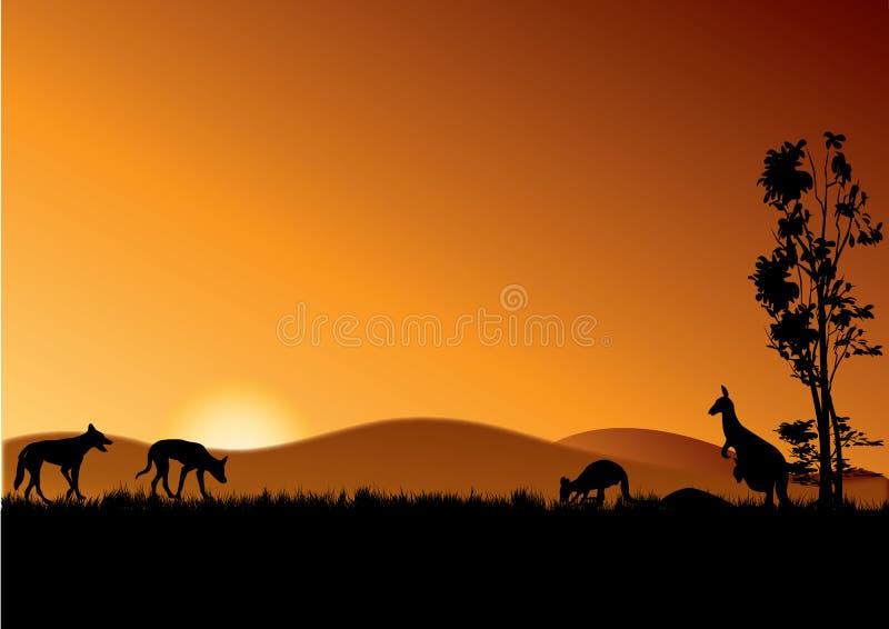 Dingo και καγκουρό στο ηλιοβασίλεμα απεικόνιση αποθεμάτων