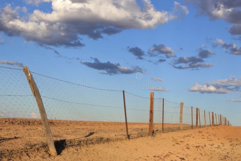 Dingostaket nära Coober Pedy i södra Australien vildmark royaltyfri fotografi