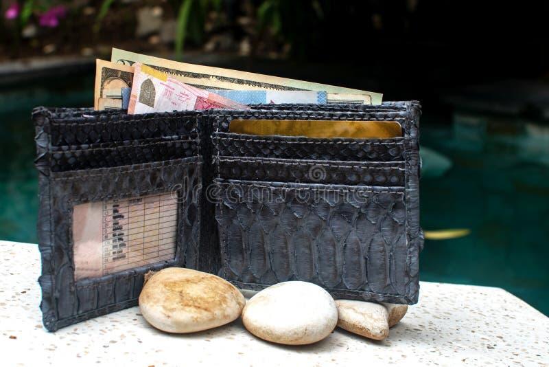 Dinheiro, cartões de crédito na carteira Bolsa completamente aberta Bolsa elegante da serpente do pitão do pitão, embreagem Acess foto de stock royalty free