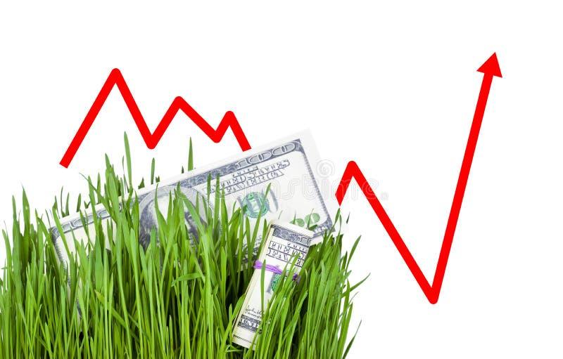 Dinheiro crescente na grama imagem de stock royalty free