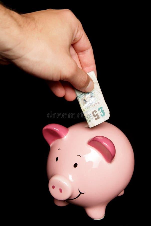 Dinheiro da economia da pessoa no banco piggy fotos de stock royalty free
