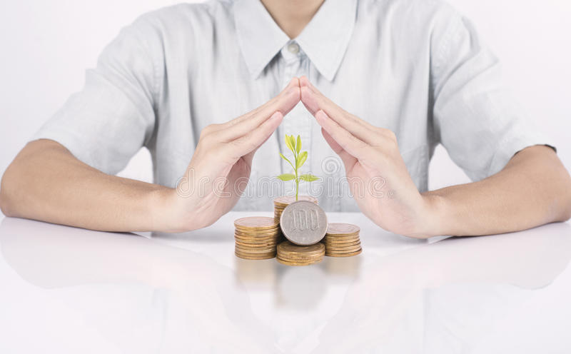 Dinheiro de proteção da mão do negócio com finança do crescimento do conceito da árvore fotos de stock royalty free