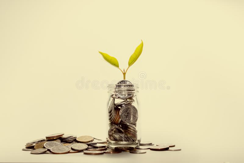 Dinheiro de salvamento para o interesse foto de stock