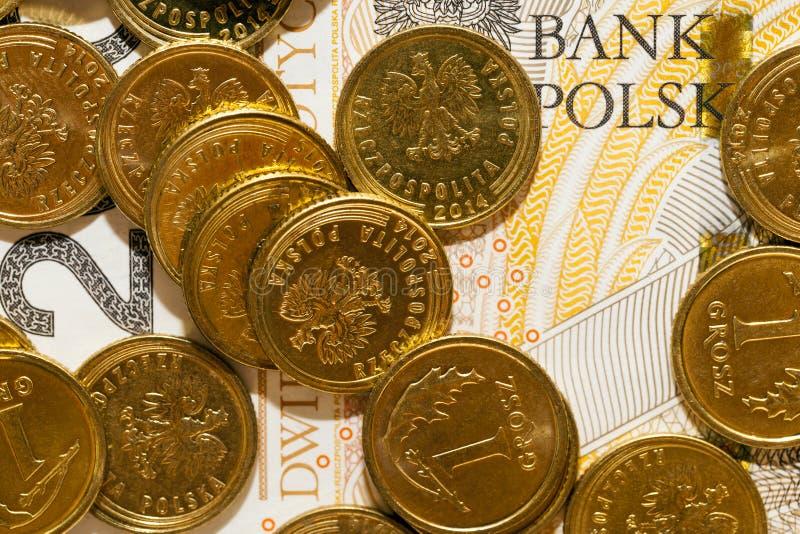 Dinheiro polonês, close-up foto de stock