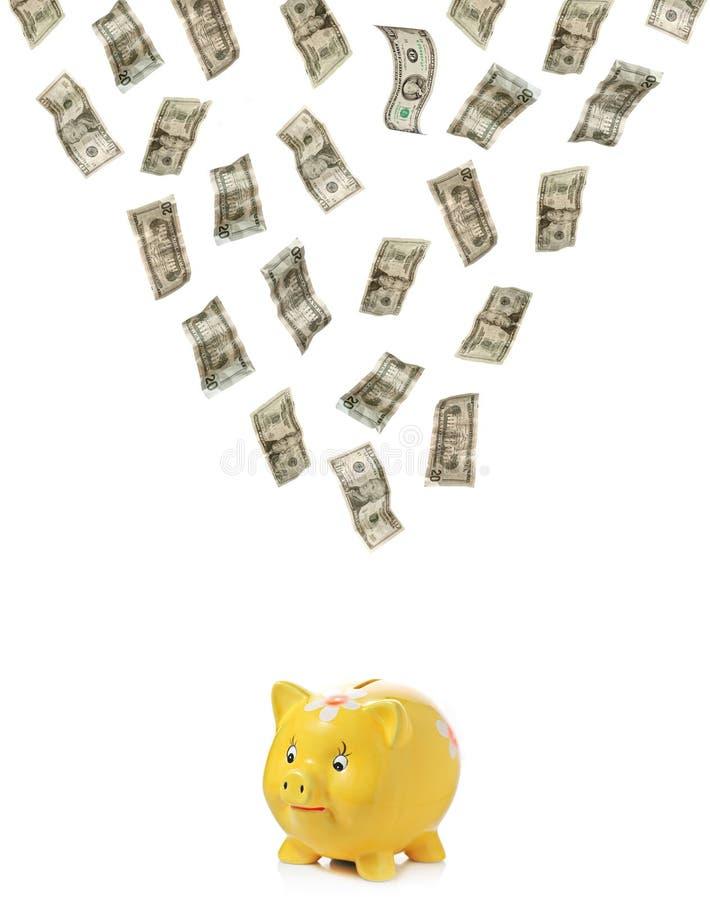 Dinheiro que chove para baixo em um piggy imagem de stock