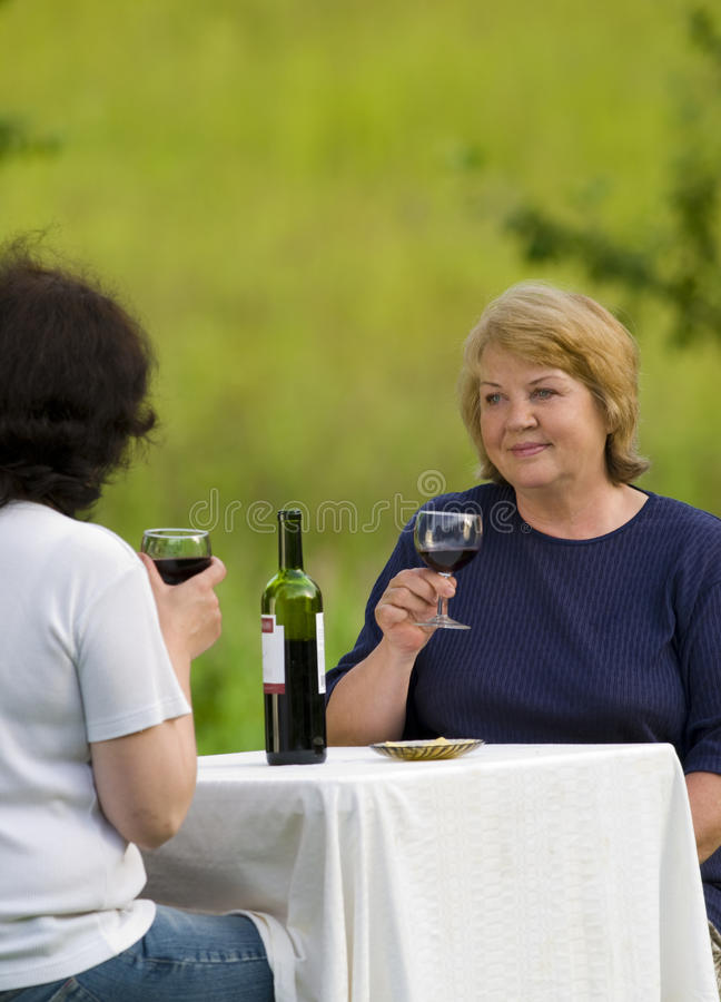 Download After dinner stock photo. Image of happiness, mother - 10408904